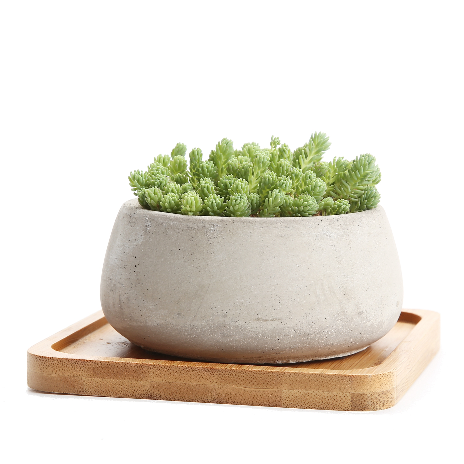 T4u 3 5 inch cement serial big round sucuulent cactus plant pots flower pots planters containers with bamboo tray grey in flower pots planters from home