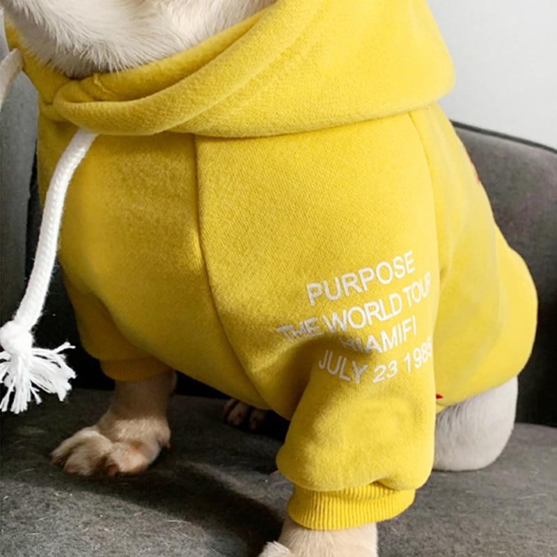 Fashion Hoodies Small Dogs  My Pet World Store