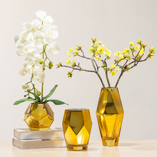 The minimalist Living Room Decoration Color Glass Vase Creative Floral Containers Transparent Bottle Hydroponic Flowerpot