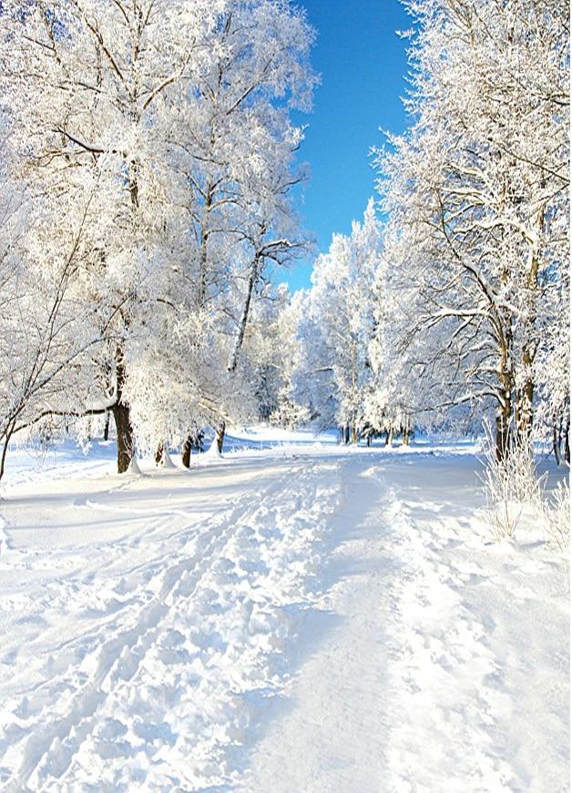 10x20ft Photography Studio Backdrop Snowy Trees Road Field