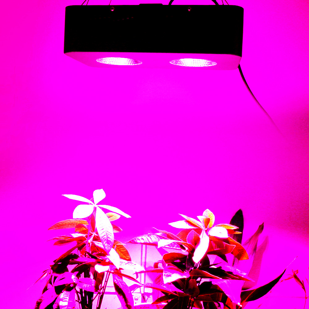 Full Spectrum 500W COB LED Grow Light for Indoor Aquarium Hydroponic Plant Floweing Growth High Yield LED Growth Lamp