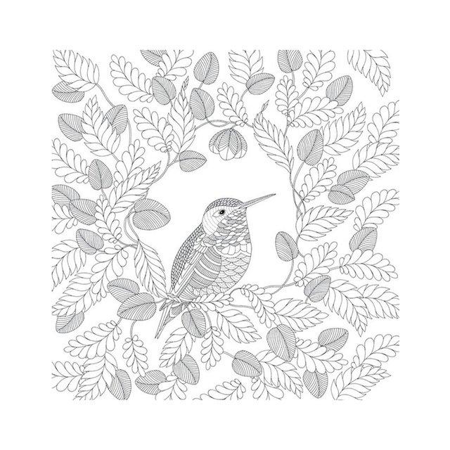Online Shop Animal Kingdom Book Coloring Books For Adult Kid