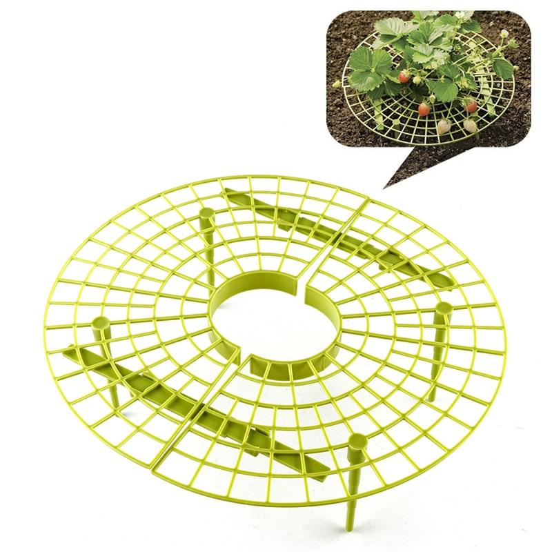 Желтый удобный клубника поддерживает для вашего сада, держать клубнику от гнили в дождливые дни