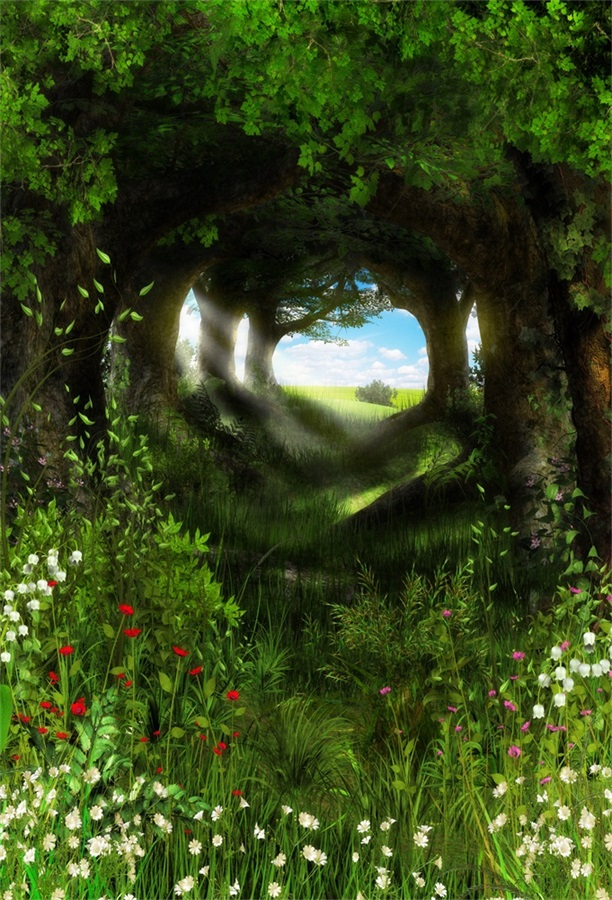 Laeacco Fairytale Green Forest Trees Flowers Path Photography Backgrounds Vinyl Custom Photographic Backdrops For Photo Studio