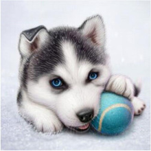 Diamante pintura, perro lindo, lleno, bordado del diamante, Husky, Animal, 5D, DIY, puntada De La Cruz, Rhinestone redondo, decoración de la habitación artesanía YY