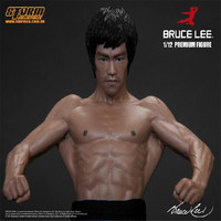 Premium Bruce Lee Kungfu Cinese Stella PVC Action Figure In Resina Collection Model Toy regalo Di Natale