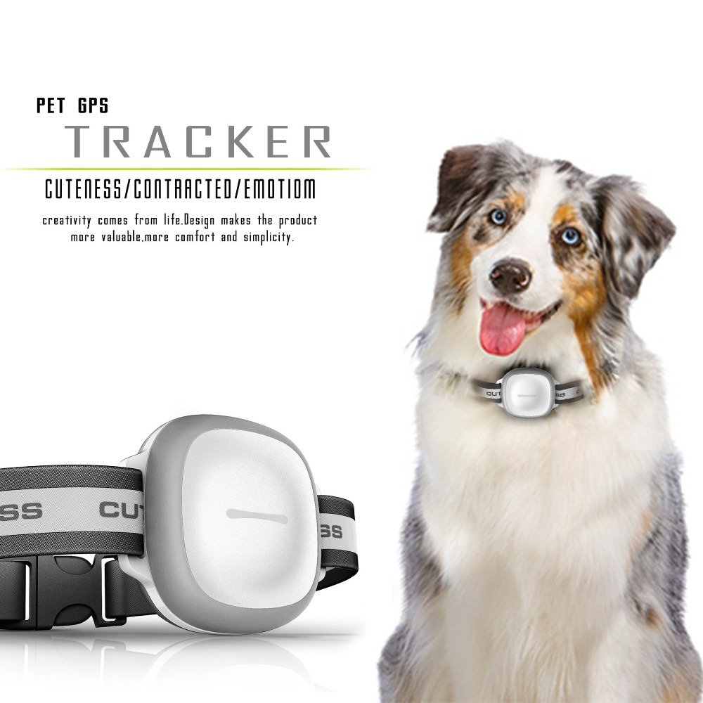 NEW upgrade smart mini pet tracker gps anti-water anti-vibration LED flash light dog pet locator