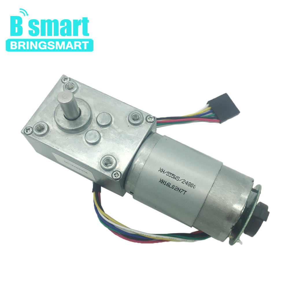 Bringsmart DC Worm Geared Motor with Encoder Disk 12 Volt 24V High Torque 60kg.cm Turbine Worm Gearbox Reducer Self Lock for DIY
