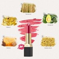 High Quality 4Pcs 12 Different Colors Sexy Lipstick Matte Waterproof Long Lasting Lip Beauty Lip Gloss