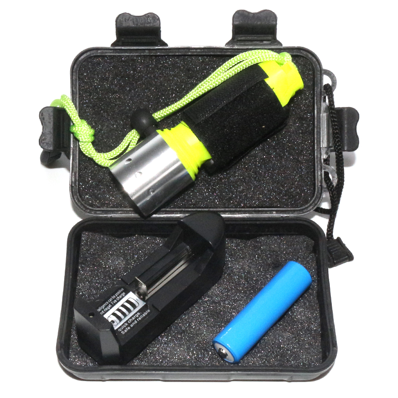 2000 Lumens CREE XML T6 Waterproof LED Flashlight Stainless Steel Plastic Underwater Scuba Diving Torch Battery