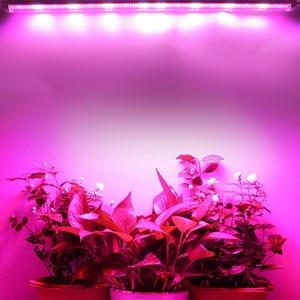 Image 4 - 20Pcs/lot LED grow light 30W 45W 60W T8 Tube Full Spectrum LED Grow Light Indoor Plants Phyto Lamps Bar for Vegetable grow tent