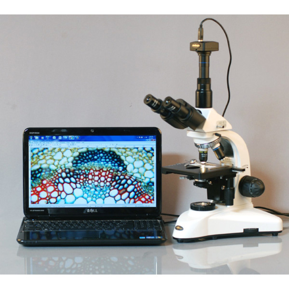 ღ ღLaboratorio microscopio biológico-amscope supplies 40X-1600X ...