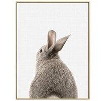 Rabbit Tail-17