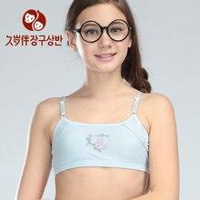 beginner bra adjustable wireless