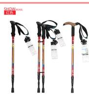 C7-0011 High quality Super Light T Handle Carbon Fiber Walking Stick CANE Telescopic Hiking Nordic Trekking Poles