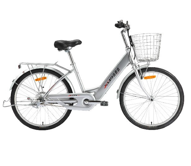 High Quality Chinese Famous Brand XDS Electric Bicycle