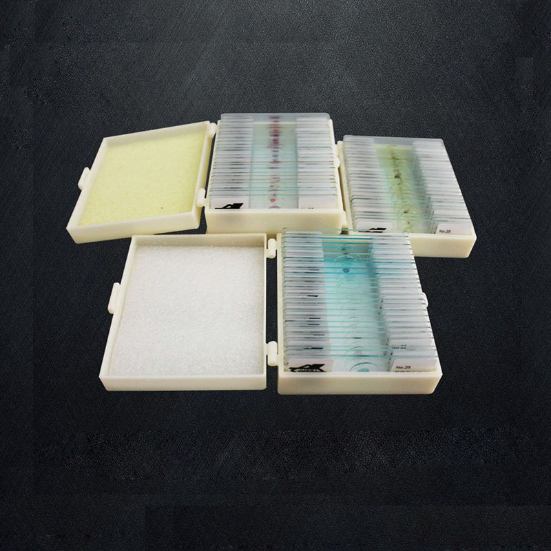 75 PCS Professional Medical Study Prepared Plants Animals Insects Specimen Scetion Slice Microscope Slides professional school teaching medical microscope 100 kinds botany prepared slides