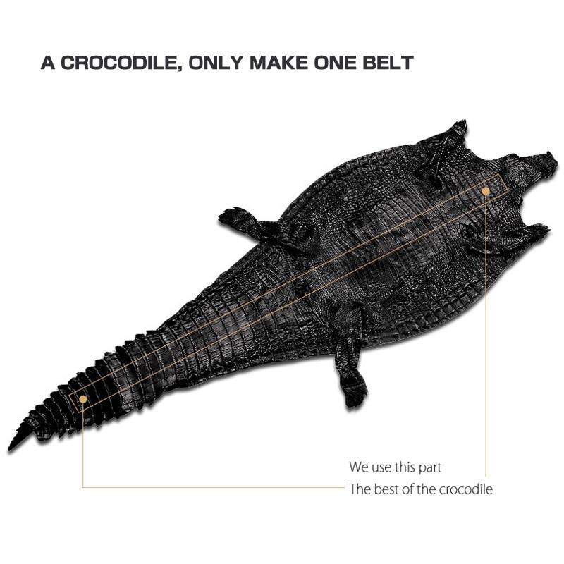 McPARKO мужской ремень из натуральной кожи крокодила мужской ремень из благородной кожи аллигатора поясной ремень без пряжки коричневый черный ремень широкий 34 мм - 6