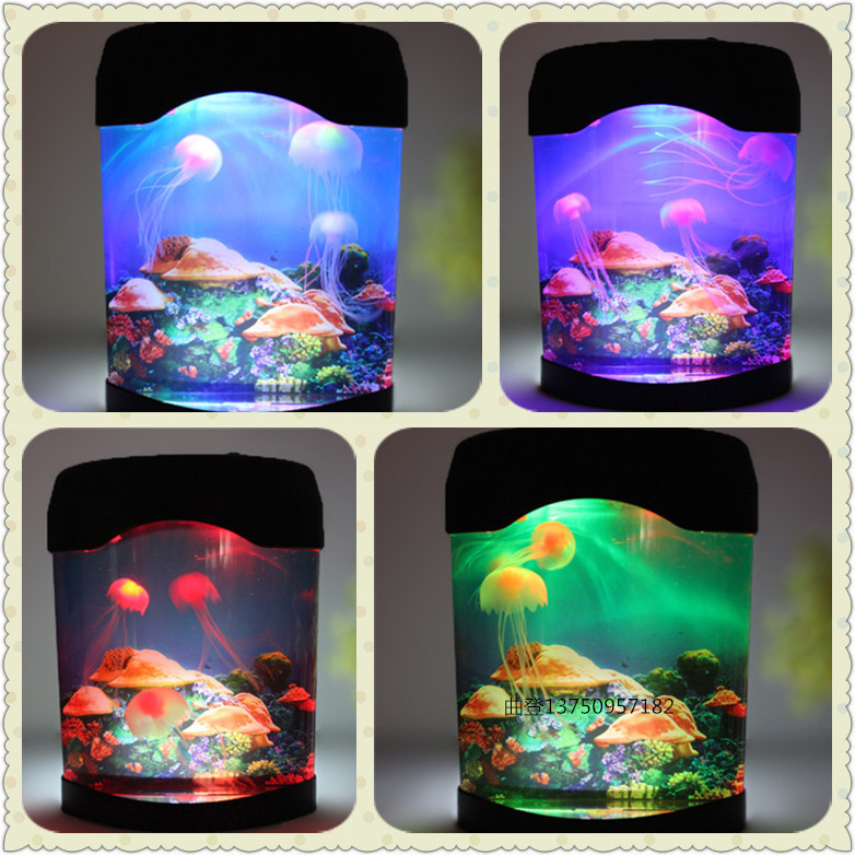 The graceful electronic box jellyfish jellyfish aquarium aquarium ...