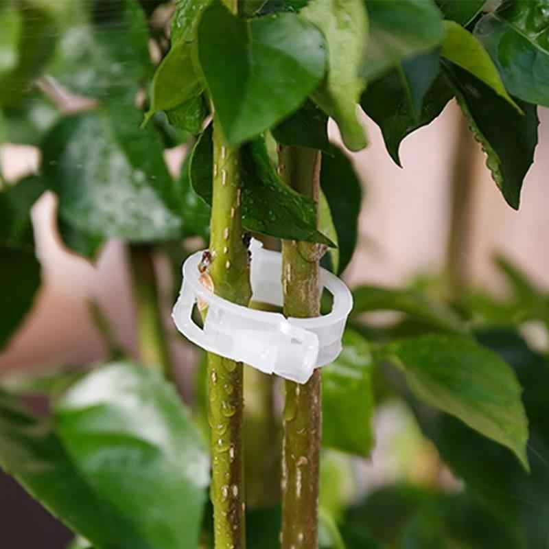 50pcs/30mm Durable Tomato Garden Plant Support Clips for Trellis Twine Greenhouse Tomato Veggie Garden Plant Clip Supplies