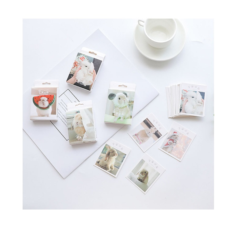 30 Sheets/Set Lovely Bunny Rabbit Postcard/Greeting Card/Message Card/Birthday Letter Envelope Gift Card