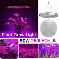 NEW Growing Lamps LED Grow Light 50W AC85 265V Full Spectrum Plant Lighting Fitolampy For Plants Flowers Seedling Cultivation