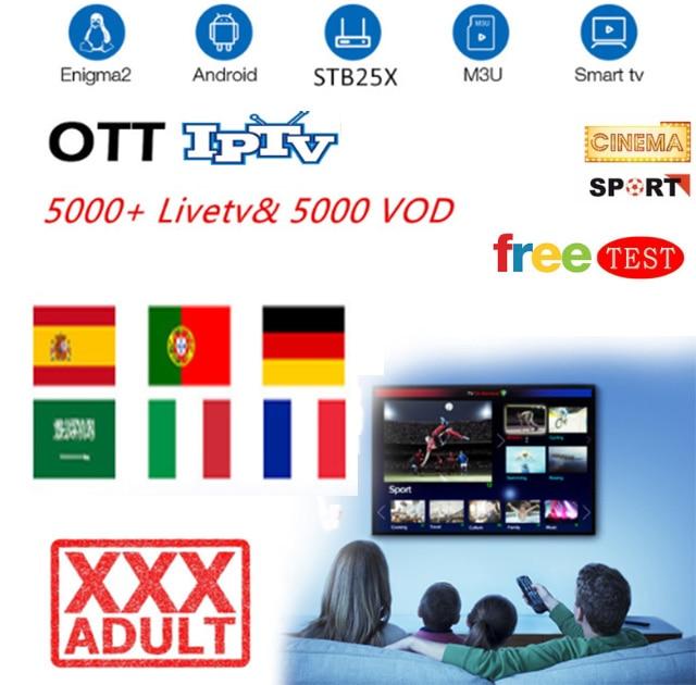 Europe IPTV Subscription ott iptv France UK German Arabic Dutch Sweden  French Poland Portugal Smart TV IPTV M3U 6000 Live