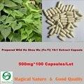 Preparado Wild Él Shou Wu (Fo-ti) 16:1 Extracto Cápsula-PRIMA-polygonum foti 500 mg * 100 Cápsulas