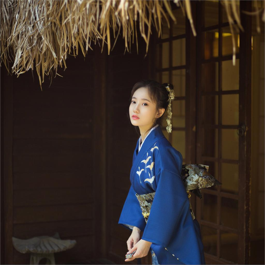 2019 SELLWORLDER Kimono japonais Style yukata rétro fille bleu robe femme grue imprimer longue robe avec sac à main