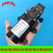 5L/Min DC12V 60W high pressure micro diaphragm water pump