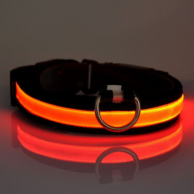 D06 naminių gyvūnėlių šunų apykaklės LED šviesos nailono - Naminių gyvūnėlių produktai - Nuotrauka 4