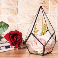 4 Size Air Planter Tabletop Succulent Diamond Glass Geometric Terrarium Box Moss Fern Flower Pot Garden