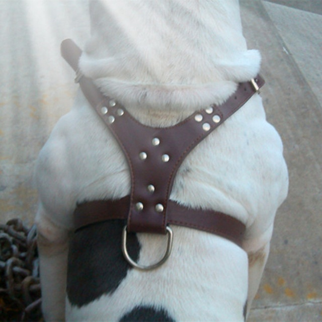 Dog Adjustable Spiked Harness