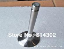 цена на inlet and exhaust valve for Ricardo R4105 series diesel engine parts