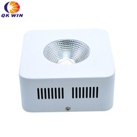 90 degree Reflector Cup 300W COB Full Spectrum led grow light for Indoor Planting Growing Veg Flowering high power