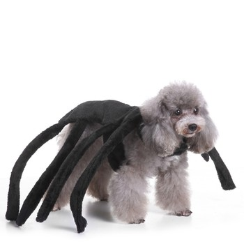Halloween Dog Clothes Rubies Costume Pet Spider Harness Costume Autumn& Winter Collections Holy Hound Dog Costume Pet clothes