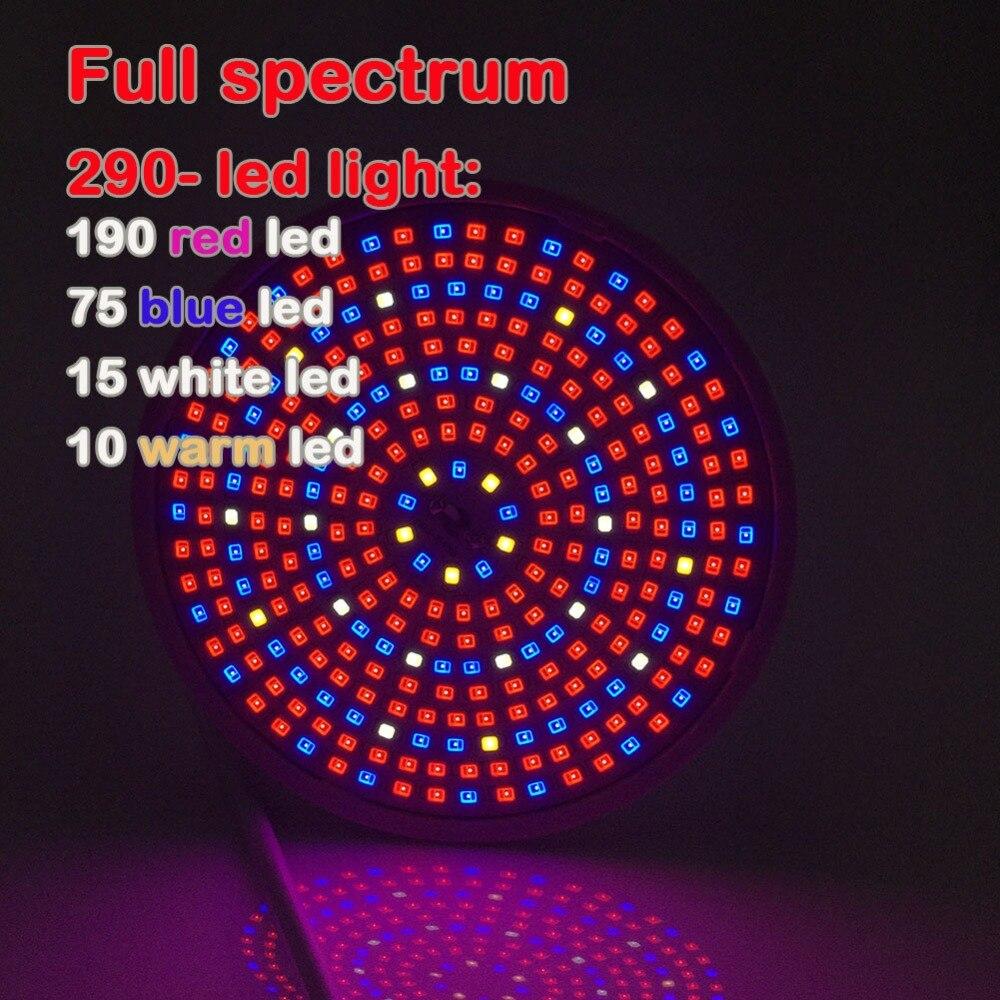 28048 (2) Full spectrum