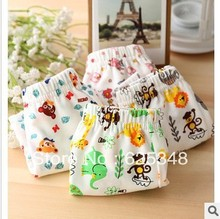 Free shipping wholesale high quality 6pcs lot retail pure cotton cartoon bear children fashion boy underwear