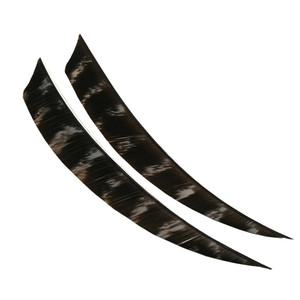 """Image 4 - 50Pcs Archery Arrow Feathers Fletches 5"""" Natural Turkey Fletching Vanes Right Wing Arrow DIY Tools Hunting Shooting Accessories"""