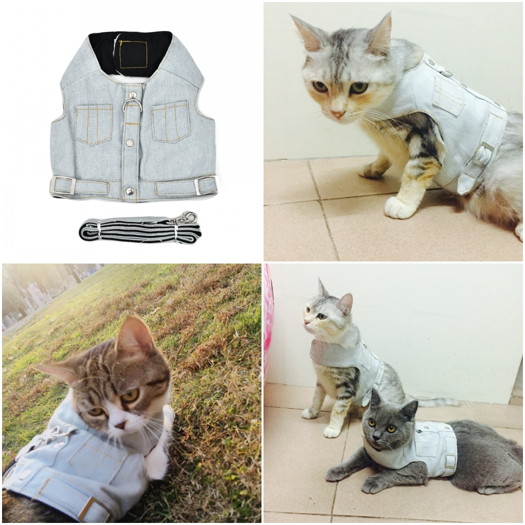 NEW Denim Harness Vest for Small Pet Dog Cat Harness Set Puppy Pet Leash XS S M L 4 Color