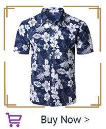 hawaiian_02