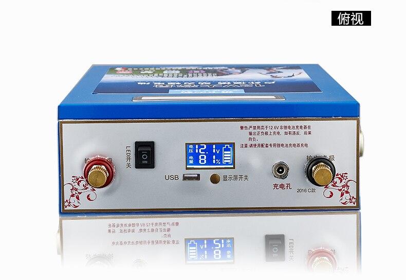 12V 5V USB 80AH, 100AH, 120AH, 140AH, 160AH, 180AH, 200AH литий ионная литий полимерные аккумуляторные батареи для Мощность банк (Бесплатная Зарядное устройство) - 3