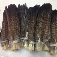 Wholesale! 200 PCS precious USA wild turkey tail feathers 6 8 inches/ 15 20 cm