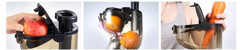 fruit juicer price
