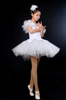 Leotard Professional Ballet Tutu Ballet Dress Adult Dance Costume Swan Lake Ballet Costumes Dance Wear