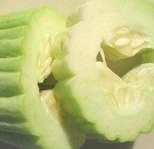 30pcs Armenian Cucumber Seeds