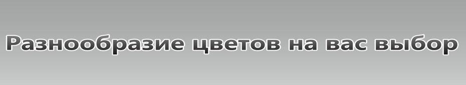 HTB1L01AaIvrK1Rjy0Feq6ATmVXab