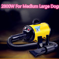 Portble 2800w Dog Pet Dryer Blower 220v For Dogs Cats Orange Pink Dog Hair Dryer With 3 Nozzles