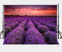 150x220cm Dusk View Backdrop Ultra Violet Lavender Garden Photography Background Color of the Year 2018 Love Wedding Party