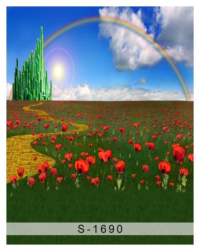 Rainbow in blue sky children photography backdrops tulip field photo backgrounds for photo studio props background S-1690